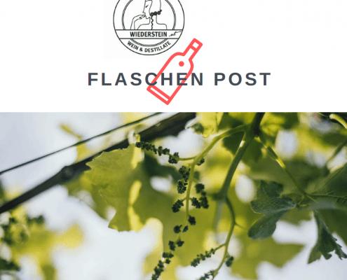 Flaschenpost Vol. 7